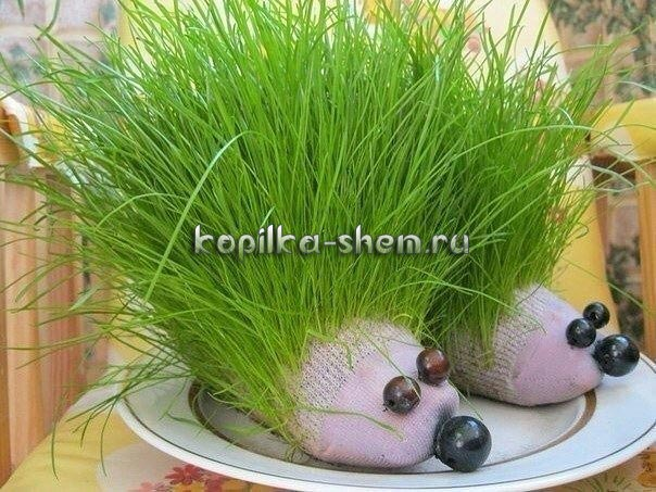 Травяной ёжик своими руками