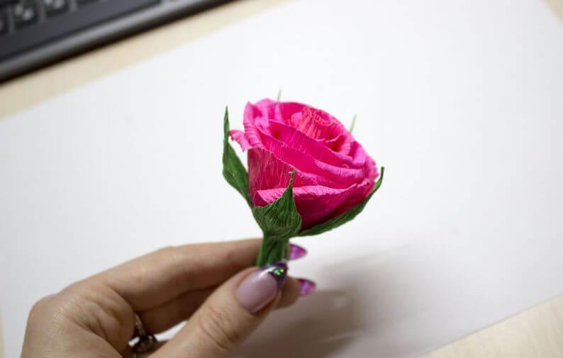 цветы +из гофрированной бумаги